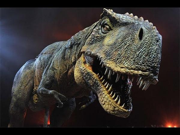 Даже бывалые ученые задумались ДИНОЗАВРЫ Где находится ЗАТЕРЯННЫЙ мир Всё о динозавроах Тайны Чапман