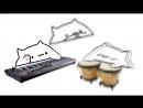 Bongo_cat_Ali-A_Intro_1080P-reformat-16842960.mp4