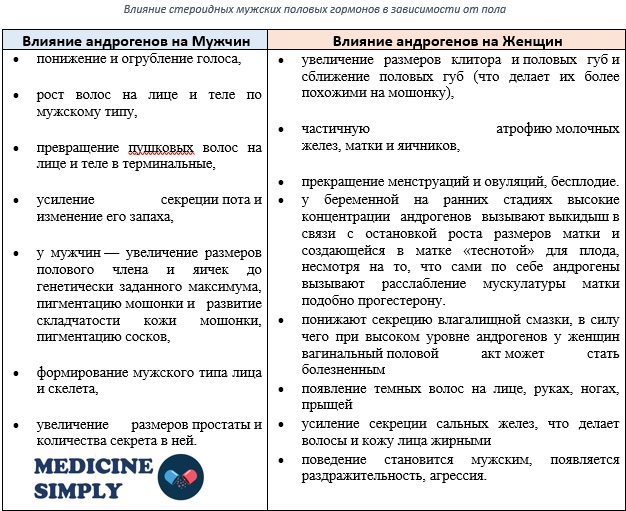 Андрогенная активность мужских половых гормонов и синтетических производных