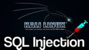 SQL Injection Tutorial For Beginners Kali Linux 1