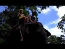 Слоны Парк Khao Lak Тайланд ПхуКет