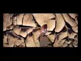 Lartiste - Maroc ---- (Clip Officiel)(144P).mp4