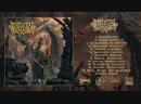 SAT216 / KTTR CD 108 / WOD 044: Skeletal Remains