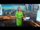 Вести-Москва Эфир от 01.07.2016. Медвежонок в Бирюлево.