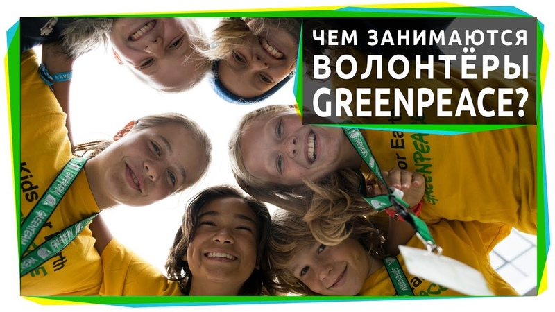 Чем занимаются волонтеры Гринпис и как к ним присоединиться?
