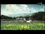 Лавика - Вечный Рай тиса1