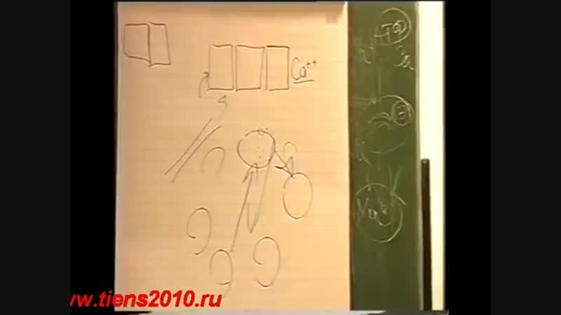 Тяньши(Tiens).Ожирение или полнота-это как кому нравится Бикбаева. www.tiens2010.mp4