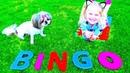 Bingo Song For Kids By Emily BINGO