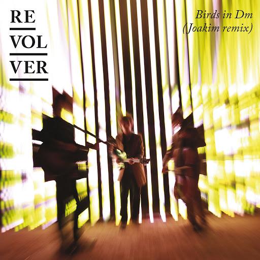 Revolver альбом Birds In Dm [Joakim Remix]