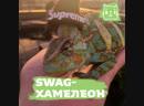 SWAG-хамелеон