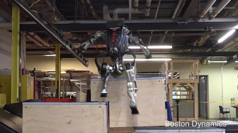 Робот Атлас уже умеет бегать