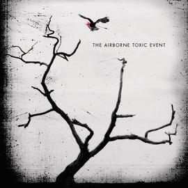 The Airborne Toxic Event альбом The Airborne Toxic Event