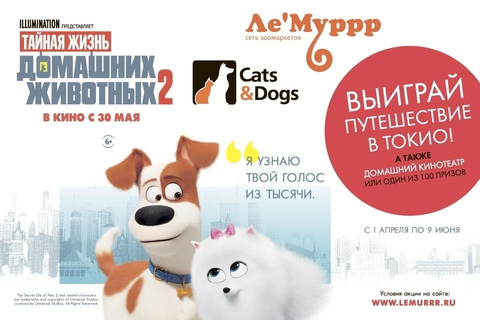 www.lemurrr.ru акция 2019 года