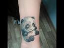 Панда, перекрытие шрамов