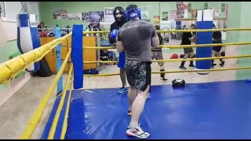 MMA IMP