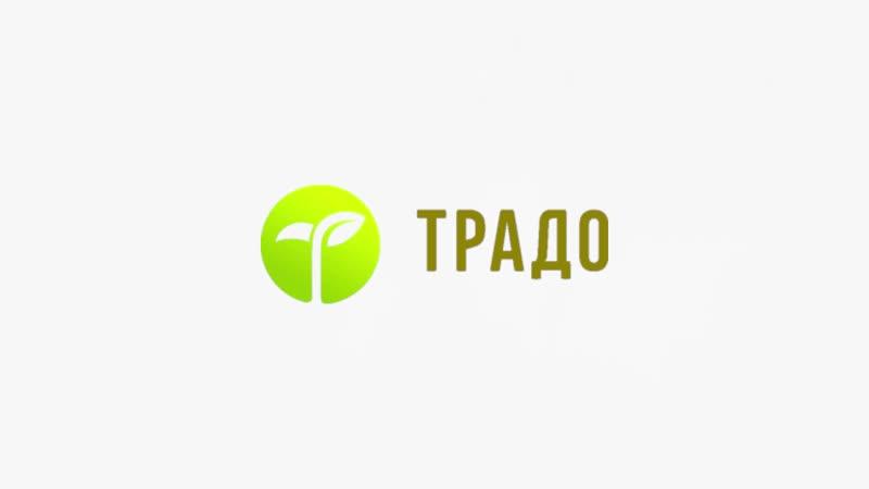 День Рождения Компании Традо 2018