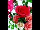 Шоколадные розы в композ живого куста дикой розы