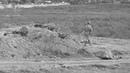 25 08 2018г Шипуново Днепровский рубеж историческая реконструкция эпизода времен ВОВ