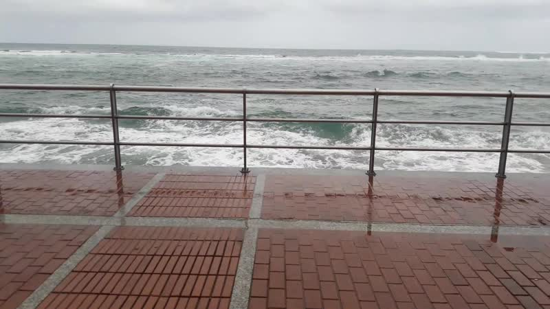15.02.2019. В день отъезда похолодало с 31 до 20 , дождь, никто не загорал и не купался ! !