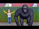 Kids and Monkey Johnny Johnny Baby Songs, Music Songs Johny Johny Yes Papa video for Children