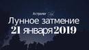 🌒ЧТО НАС ЖДЕТ ! ПОЛНОЕ ЛУННОЕ ЗАТМЕНИЕ 21 января 2019 Астролог Olga