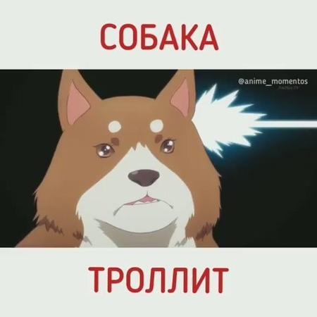 Момент из аниме Садистская смесь Blend S