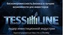 TessLine Презентация Надежно Легально Выгодно