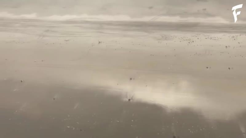 Катастрофа у берегов Гренландии и Германии ¦ Disaster off the coast of Greenland and Germany