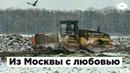 Из Москвы с любовью как столичный мусор отравит поморскую тайгу