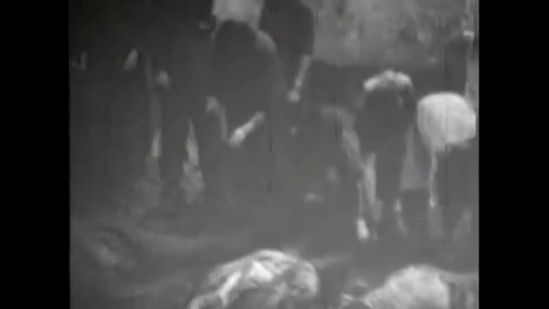 Расстрелы заключенных тюрем НКВД Западной Украины в июне-июле 1941 года.