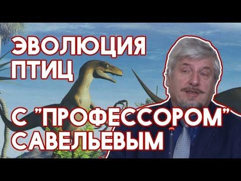 Упоротый Палеонтолог - Профессор Савельев и эволюция