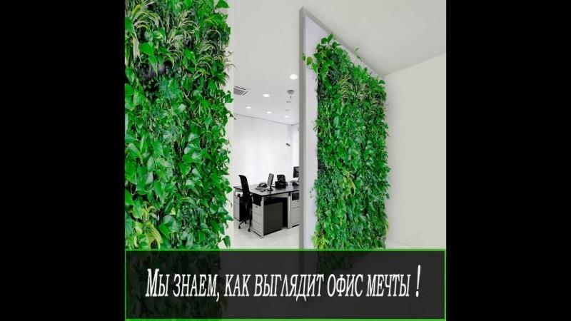 Бизнесмены, рядом с растениями люди трудятся на 15 эффективнее