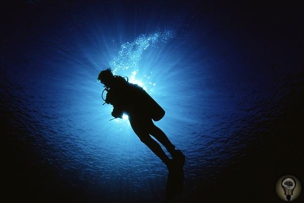 НАУКА: ЛЮДИ НА ПРЕДЕЛЕ Один час 42 минуты 22 секунды в бочке с ледяной крошкой провел голландец Вим Хоф, установив в 2009 году мировой рекорд. В 2013-м он улучшил результат на 11 минут 40