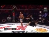 #WFCA50 Egor Golubtsov vs. Mansur Djamburaev