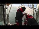 Clip sur l'expédition Tara Oceans Polar Circle