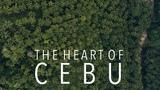 The Heart of Cebu