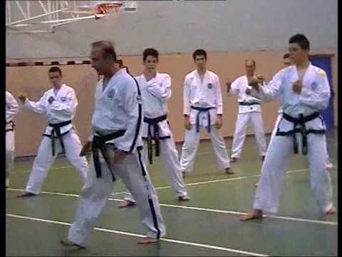 Taekwon-do ITF Fundamental Kicking and Punching Techniques part 2