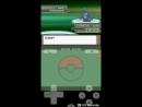 Pokemon Platinum Elite Four Aaron Rematch
