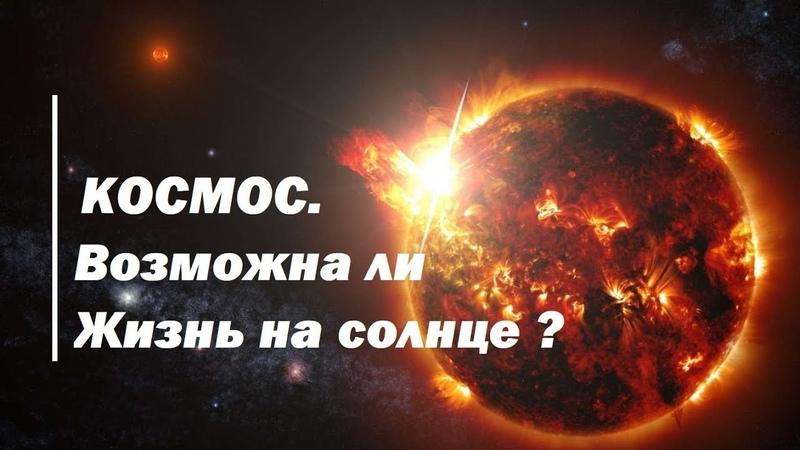 Неисследованный космос. Возможна ли жизнь на солнце ?