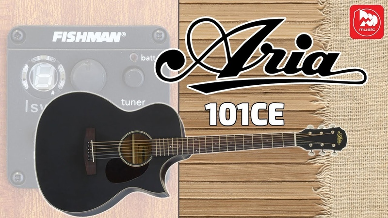 Электроакустика ARIA-101CE