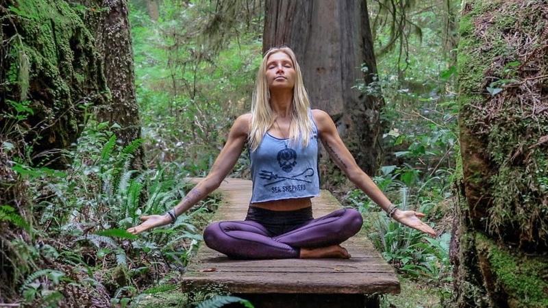 Хатха йога для любого уровня практики