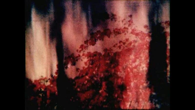 Движение образов / Le Mouvement des Images (1925-1973)