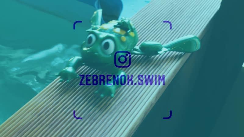 Школа раннего и грудничкового плавания Зебренок