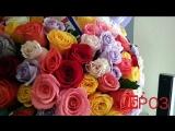 Букет из 101 цветной розы с крупным бутоном (Микс) -5250р
