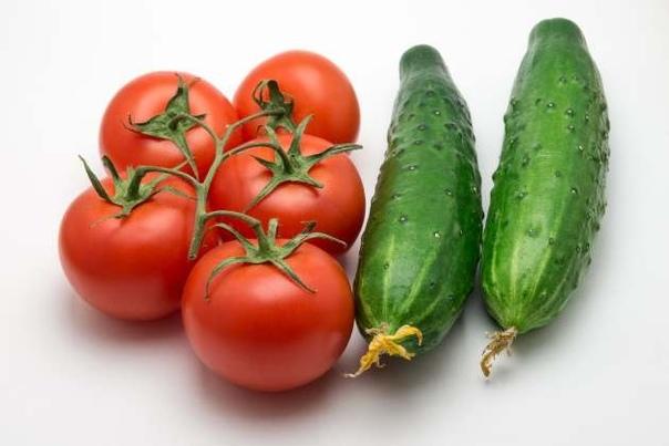 Можно ли рядом сажать огурцы и помидоры
