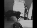 Real Fake scream movie camera ПОДПИШИСЬ FOLLOW @ 640 X 640 mp4