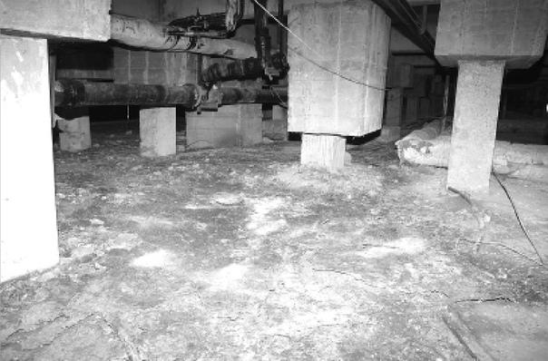 Океан тухлой воды в подвале дома по ул. Дружбы Народов, 8