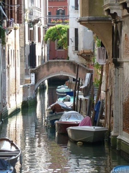 В былые времена в Венеции проституткам платили за демонстрацию груди на мосту Понте-делле-Тетте