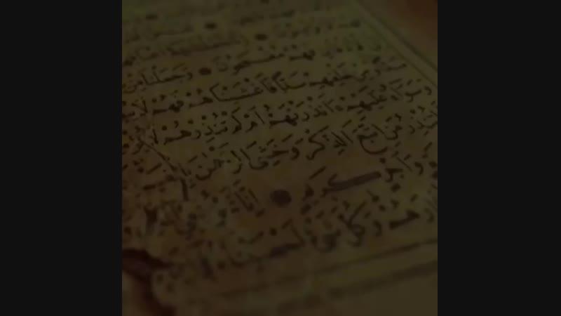 "Al Farruk   الفاروق on Instagram: ""ᅠ ᅠ Reciter: Omar Hisham Surah: «Ya Sin» - Йа Син"