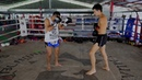 Muay Thai Basics How to Throw a Muay Thai Teep Front and Rear